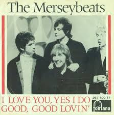 Image result for the merseybeats 2015